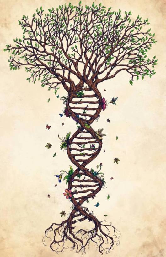 Science-DNA-Biology-Tree-Of-Life-Tattoo-Stencil