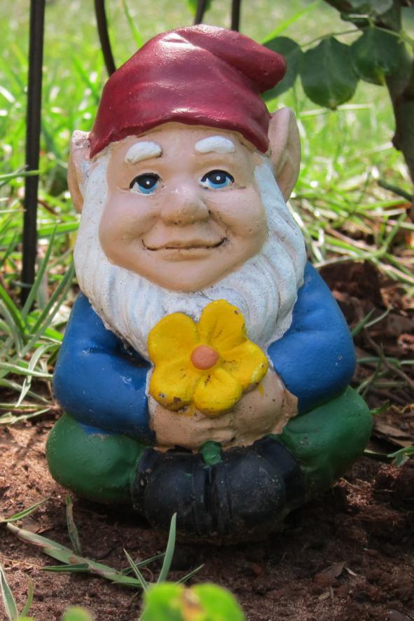 https://vermontprideblog.files.wordpress.com/2021/09/31218-gnome.jpg